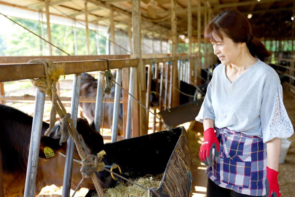 坂元牛は健康に育てられます